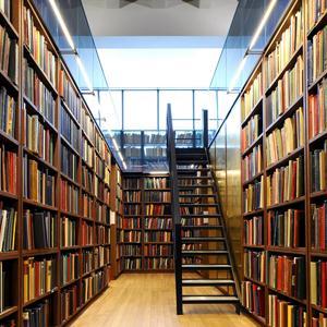 Библиотеки Бурлы